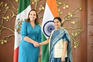 Swaraj-Salinas