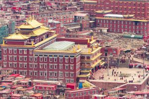 tibet-profile
